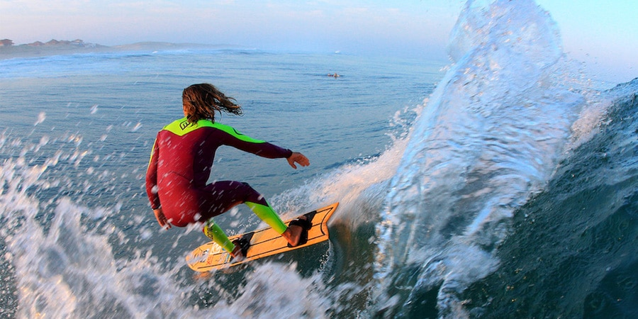 fred compagnon free surf