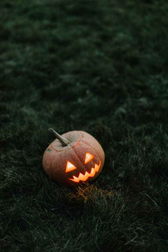 jack o lantern on green grass