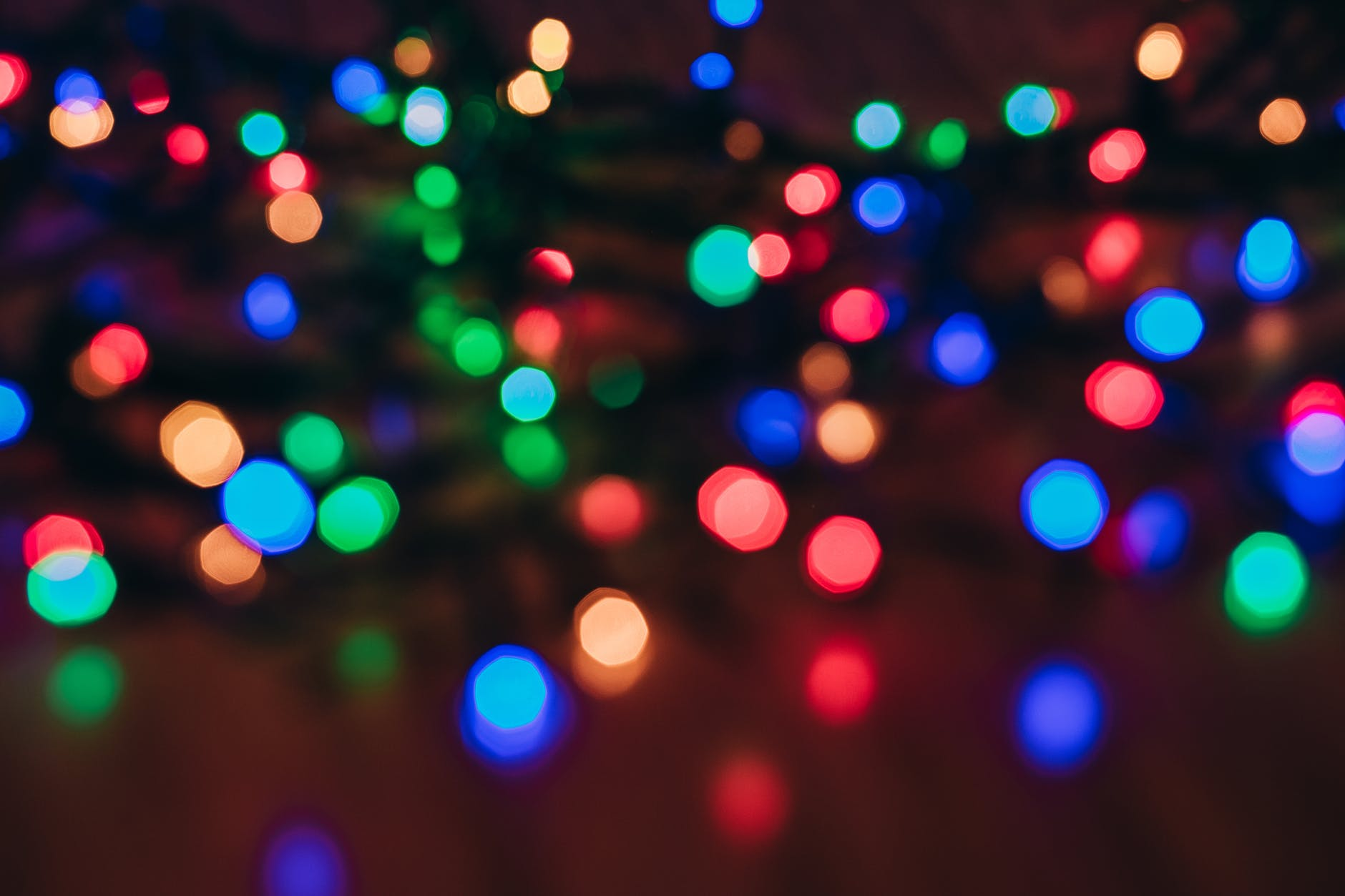 photo of string lights