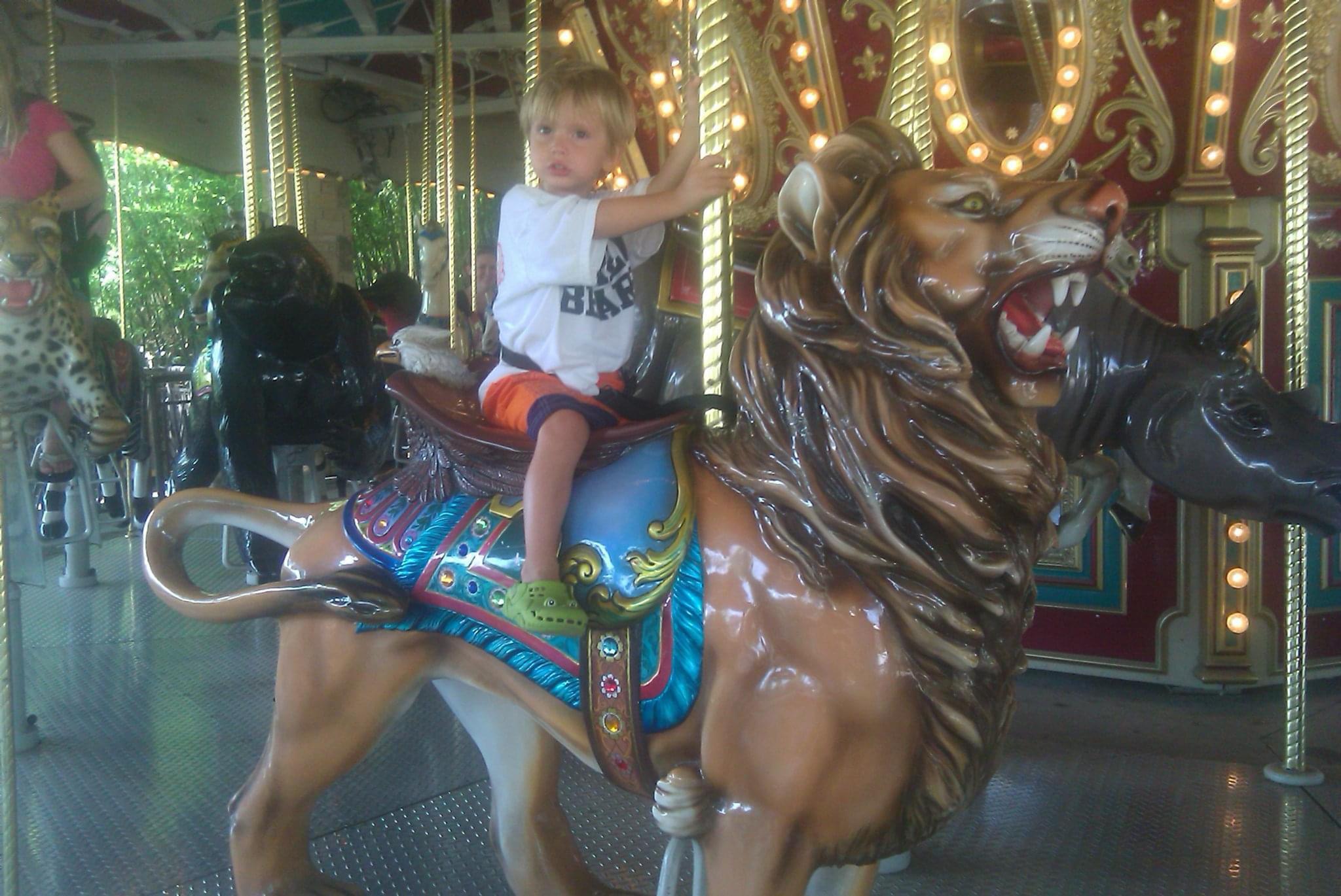 Carousel ride at the Dallas Zoo Texas