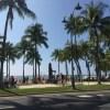 ワイキキビーチで高いレベルのバクテリアが検出。ワイキキビーチには念のため入らない方がいいかも?