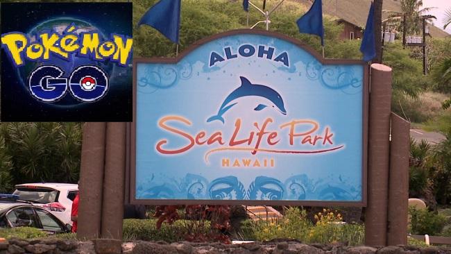 sea-life-park-Pokemon