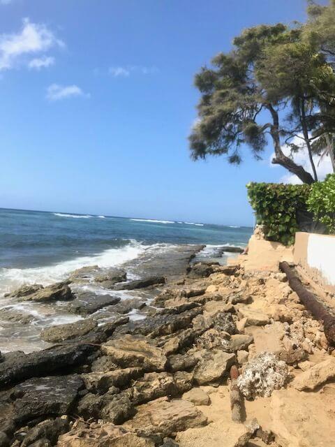 ハワイのビーチなくなる