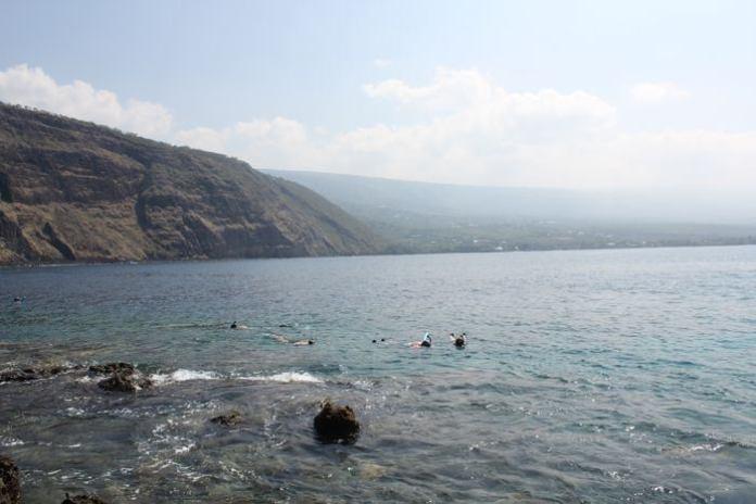 Die Unterwasserwelt in Hawaii