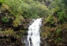 Waimea-Falls-Park-225x300.jpg