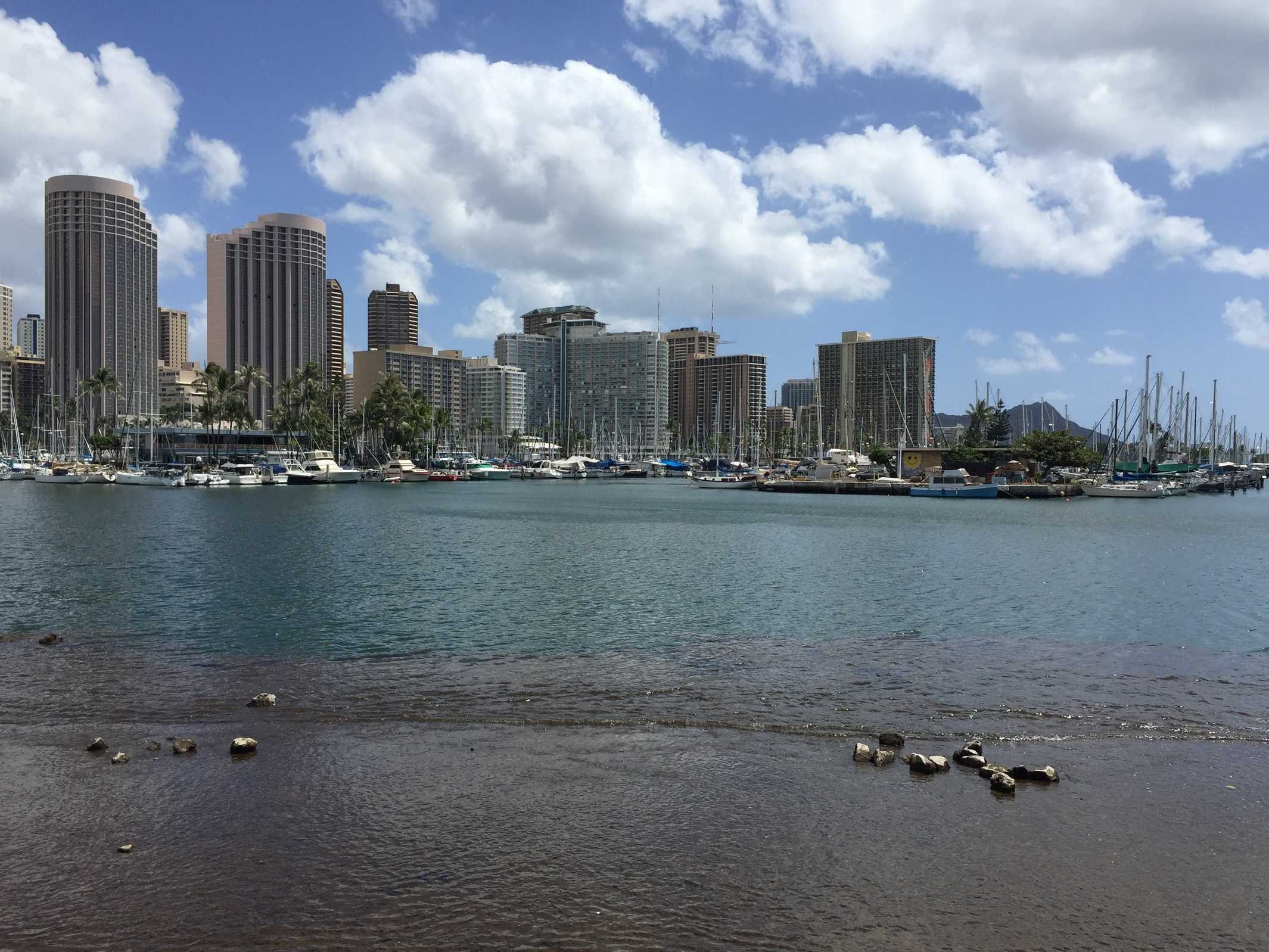 Konny Island Hawaii Buchen