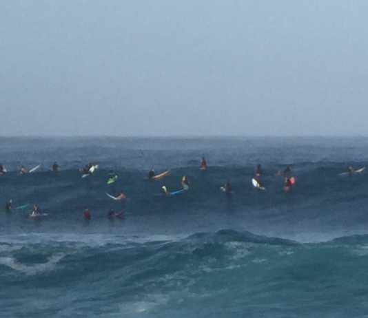 Riesenwellen an Waimea Bay