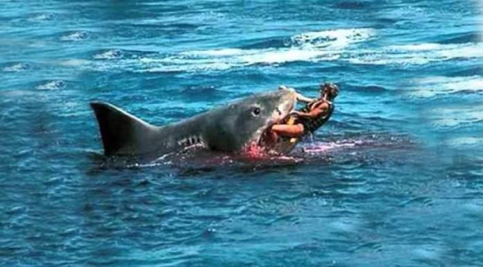 Hai Angriff Hawaii