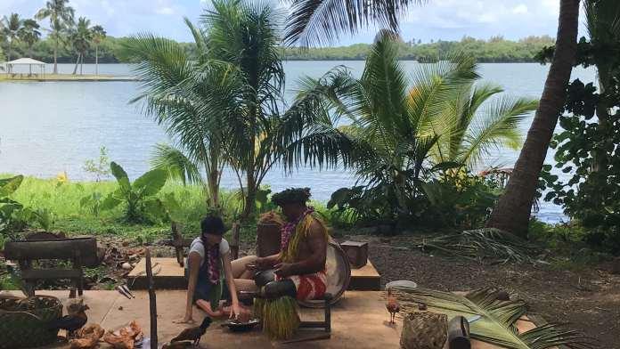 Ali'i Tour Macadamia Nuss Farm