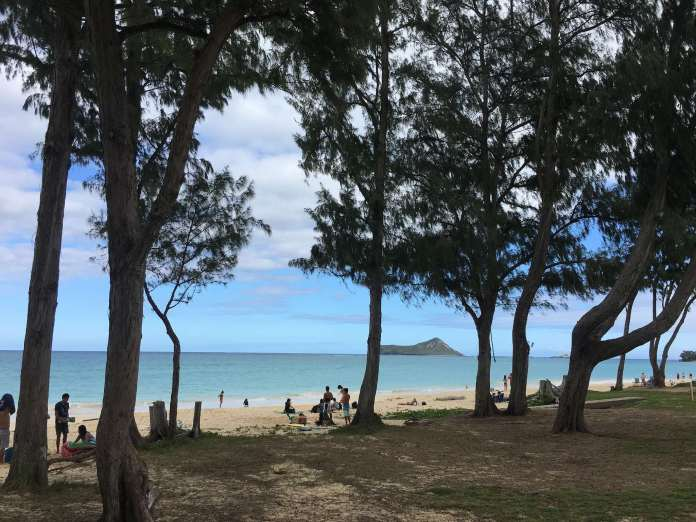 Park am Strand in Hawaii