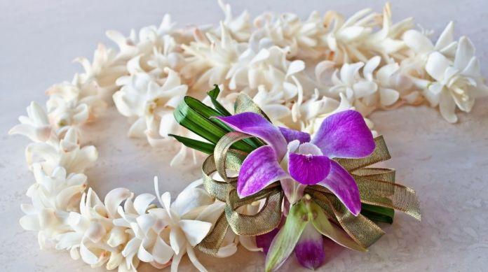 Blumen in Hawaii – Das Paradies heißt dich willkommen