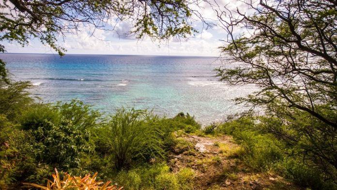 Wissenswertes über Hawaii
