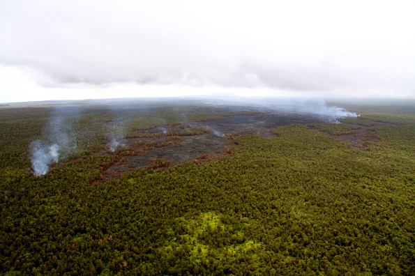The Kahaualeʻa 2 flow remains active, with scattered pāhoehoe breakouts driving slow advancement of the flow field through the forest Monday (April 7, 2014). Breakouts at the flow margins trigger forest fires, and numerous plumes of smoke. Today, the flow front was 8.2 km (5.1 miles) northeast of the vent on Puʻu ʻŌʻō. Photo courtesy of USGS/HVO