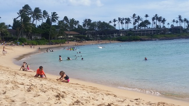 best hawaii airfare sales