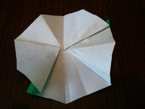 8,指を使って、上手に形を整えながら、五角系をつくります。