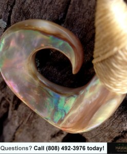 abalone fish hook necklace