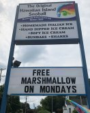 origiinal Hawaiian Snoball Maryland Randallstown, Holbrook