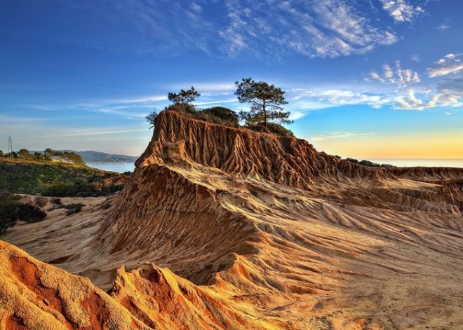 Torrey Pines State Reserve: San Diego Itinerary