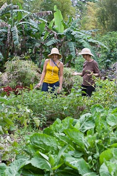 Karin Payne (on right) shows the perennial greens garden to visitor Taylor Thornton.