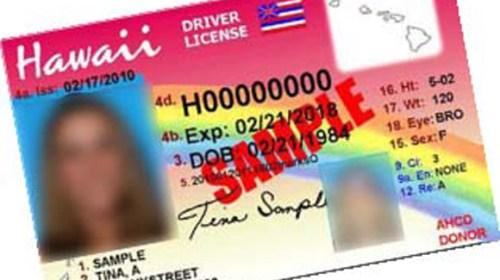 Hawaii ID