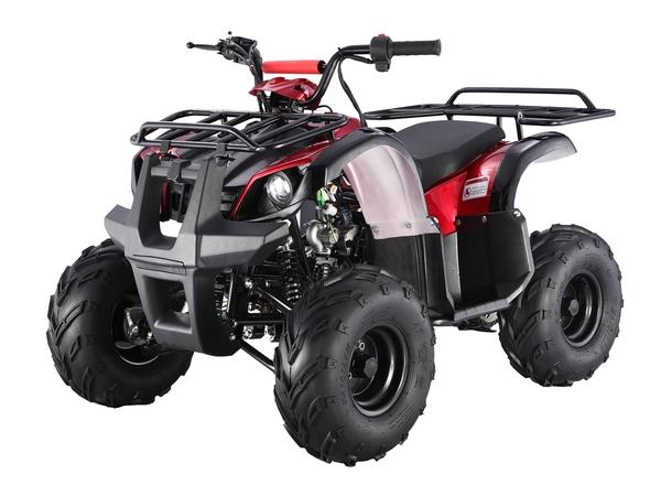 TAO Motor D-125 ATV