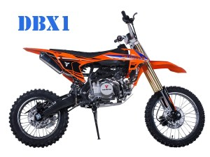 Tao Motor DBX-1 Cheap Dirt Bike for Sale in Hawaii