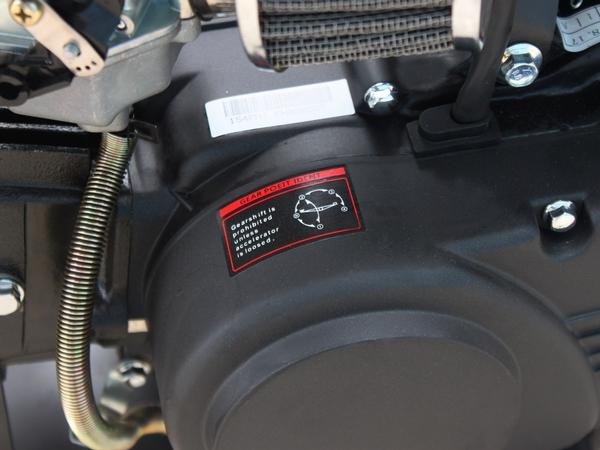 Tao Motor DB17 Cheap Dirt Bike Engine for Sale in Hawaii