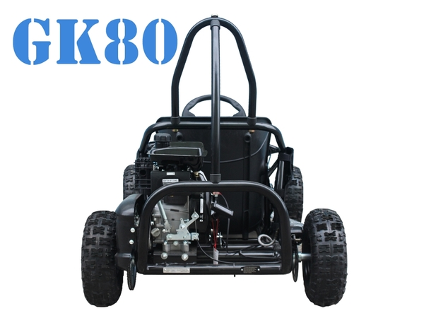 Tao Motor GK-80 GoKart for kids on sale - Hawaii