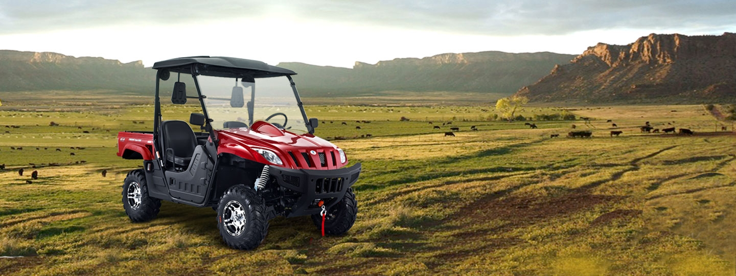 BMS Ranch Pony-500 UTV 2-Door 4×4 EFI