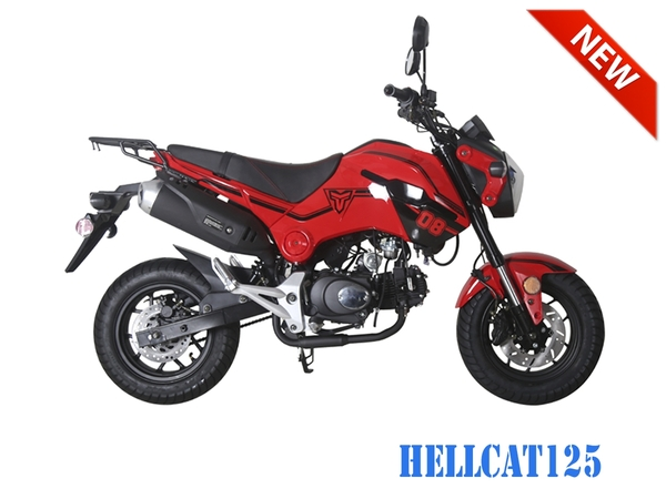 Tao Motor Hellcat 125cc Motorcycle - Manual by Hawaii Powersports