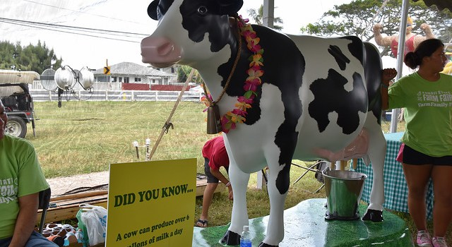 It's Ag-Tastic! The 54th annual Hawaii State Farm Fair to be Held at Kualoa Ranch on July 9 and 10
