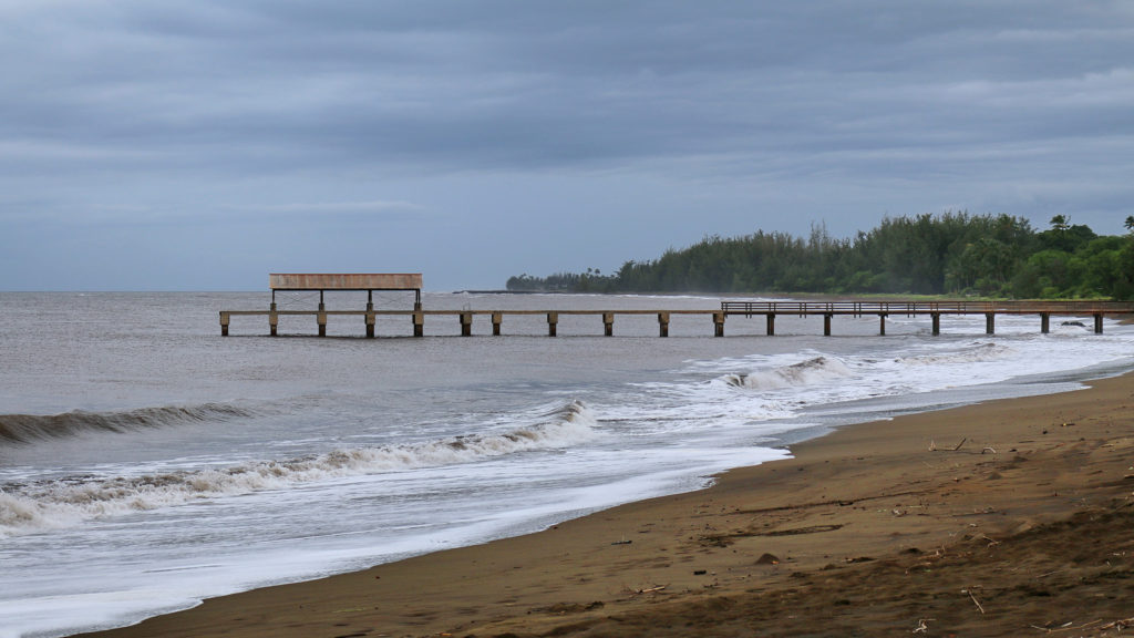 Waimea State Recreational Pier