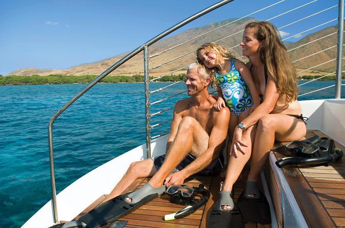 Afternoon Turtle Snorkel on Maui