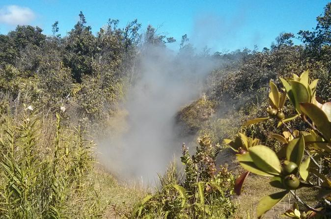 Hilo Hot Steam Volcano Tour on Hawaii