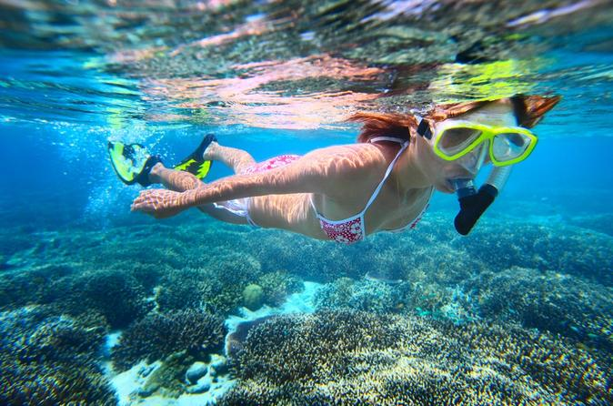 Leeward Coast Dolphin and Snorkel Half-Day Cruise on Oahu
