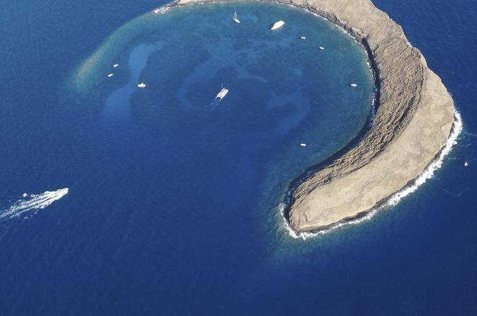 Molokini and Turtle Town Snorkeling Adventure on Maui