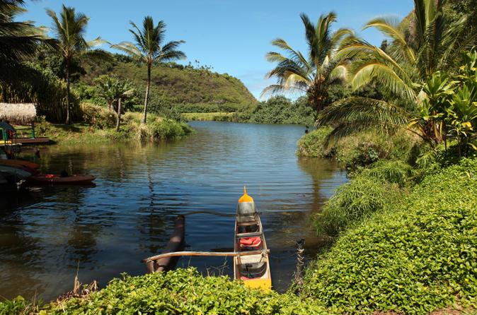 Wailua River Kayak and Hike Adventure on Kauai