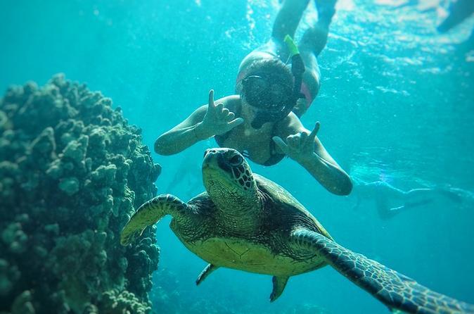 West Maui Snorkeling Adventure on Maui
