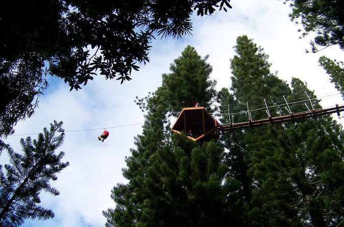 Zipline Treetop Tour on Kauai