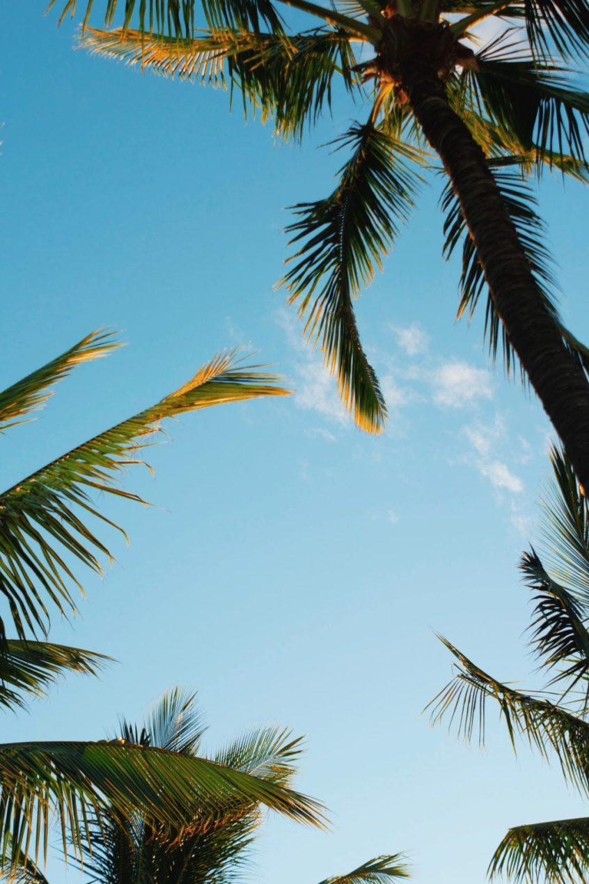 Camping in Hawai'i