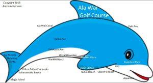 Waikīkī 101: A dolphin orientation for tourists