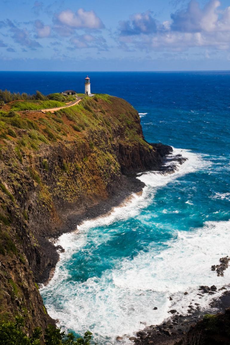 The Ultimate Guide to Birding on Kauai featured by top Hawaii travel blog, Hawaii Travel with Kids: Kilauea Wildlife Refuge is a poplar place for Kauai bird watching