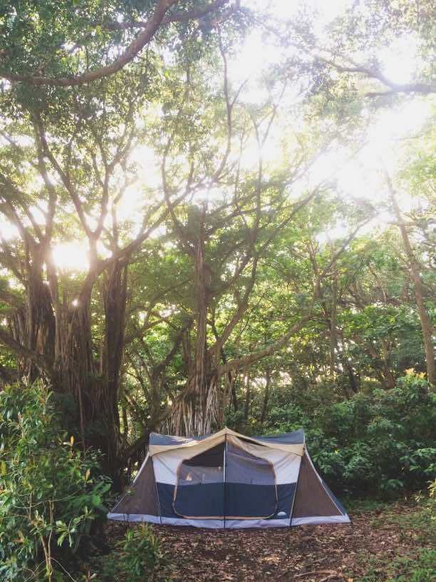 Ultimate Guide to Camping on Maui with Kids featured by top Hawaii blogger, Hawaii Travel with Kids: If you're heading to Hawaii on a budget, look into camping in Hawaii to save money and you could stay in a peaceful spot like this campsite in Hawaii