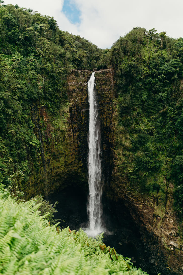 The Ultimate Guide to Hawaii Volcanoes National Park featured by top Hawaii blog, Hawaii Travel with Kids: Akaka Falls is one of the largest Big Island waterfalls