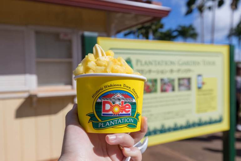 Oahu or Kauai: Which is the Best Hawaiian Island for Kids? Tips featured by top Hawaii travel blog, Hawaii Travel with Kids: Dole Whip pineapple ice cream at Dole Plantation on Oahu