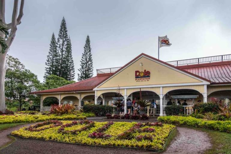The Dole Plantation is one of the top tourist attractions in Hawaii. Image of the front of the Dole Plantation visitors center with shrubs in front spelling out the word DOLE.