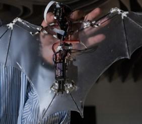 Bat Bot B2
