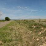 119 acres