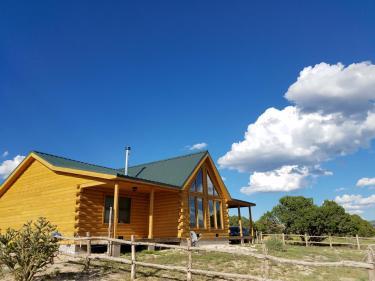 Log Dream Home 40 Acres