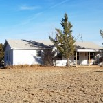 Country Living in Town 2.5 Acres